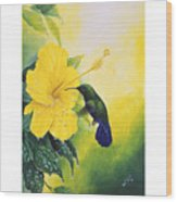 Green-throated Carib Hummingbird And Yellow Hibiscus Wood Print