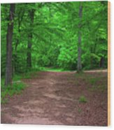 Green Trail Wood Print