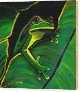 Green Tree Frog And Leaf Wood Print by Nick Gustafson