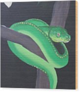 Green Tree Python Wood Print