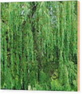 Green Tree View. Wood Print