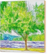 Green Trees By The Water 3 Wood Print