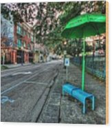 Green Umbrella Bus Stop Wood Print by Michael Thomas
