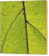 Green Veins Wood Print
