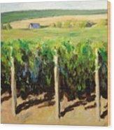 Green Vineyards Of Napa Wood Print