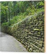 Green Wall Wood Print