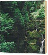 Green Waterfall Wood Print