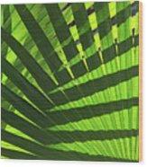 Green Weaver Wood Print