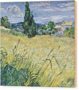 Green Wheatfield With Cypress Wood Print