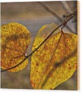 Greenbrier Glow Wood Print