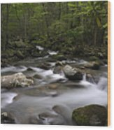 Greenbrier In The Great Smoky Mountains Wood Print