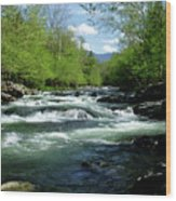 Greenbrier River Scene Wood Print