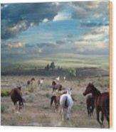 Greener Pastures Wood Print