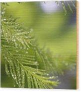 Greenery 1318 Wood Print