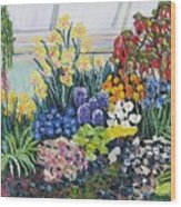 Greenhouse Flowers With Blue And Red Wood Print