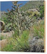 Greening Of The High Desert Wood Print