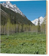 Greens And Blues Of The Maroon Bells Wood Print