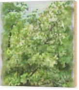 Greenstone Trail Wood Print