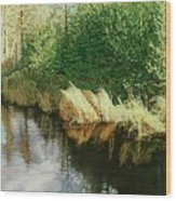 Greenview Beaver Pond Wood Print
