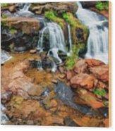 Greenville's Reedy River Falls, South Carolina Wood Print