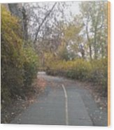 Greenway Trail In The Fall Wood Print