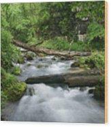 Greer Spring Branch 1 Wood Print