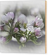 greeting card - Apple Blossoms  Wood Print