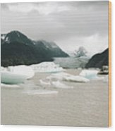 Grewingk Glacier Wood Print