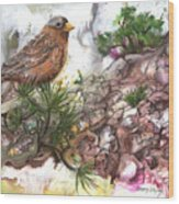 Grey Crown Rosy Finch Wood Print
