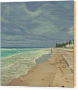 Grey Day On The Beach Wood Print