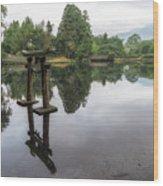 Grey Heron On Lake Kinrin Wood Print