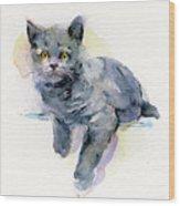 Grey Kitten Wood Print