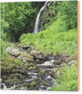 Grey Mares Tail Wood Print