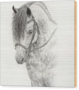 Grey Pony Wood Print