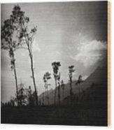 Grey Skies Wood Print