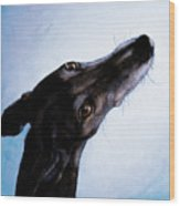 Greyhound - Always There Wood Print