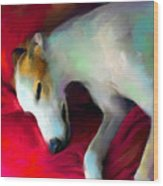 Greyhound Dog Portrait  Wood Print