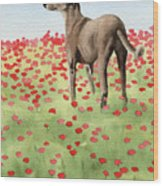 Greyhound In Poppies Wood Print