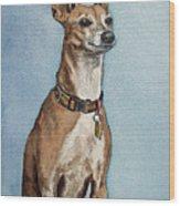 Greyhound Commission Painting By Irina Sztukowski Wood Print