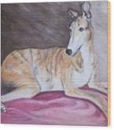 Greyhound Number 2 Wood Print