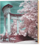 Grieving Columns Wood Print