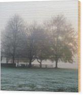 Grings Mill Fog 15-016 Wood Print