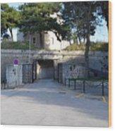 Gripe Fort Entrance Wood Print