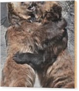Grizzlies' Playtime 2 Wood Print