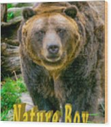 Grizzly Bear Nature Boy    Wood Print