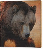Grizzly Bear Painted Wood Print