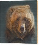 Grizzly Bear Portrait Wood Print by Betty LaRue