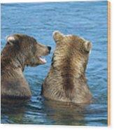 Grizzly Bear Talk Wood Print