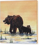 Grizzly Bears Wood Print