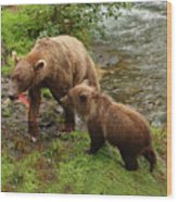 Grizzly Dinner For Two Wood Print